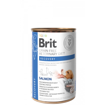 Brit Veterinary Diet Can Dog & Cat Recovery