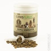 Canis Purus Supplement Gewrichten