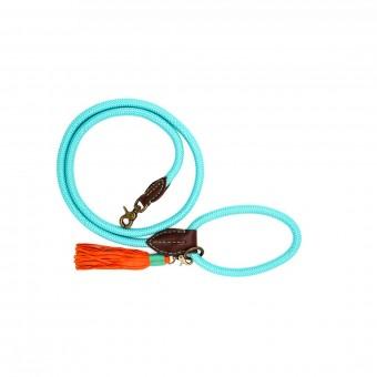 Dwam Turquoise Hondenriem