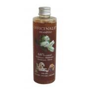 Officinalis Melaleuca shampoo