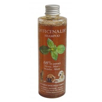 Officinalis Munt shampoo