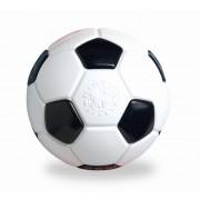 Planet Dog Voetbal