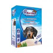 Renske Vers Hond oceaanvis
