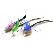 Tabby Tijger Furr & Feather